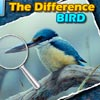 Trova le Differenze – Spot the Difference – Bird