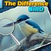 Trova le Differenze – Spot the Difference – Bird